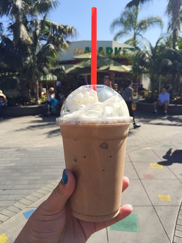 Mocha Freeze at Legoland California