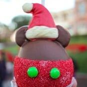 Disneyland Christmas 2015-14