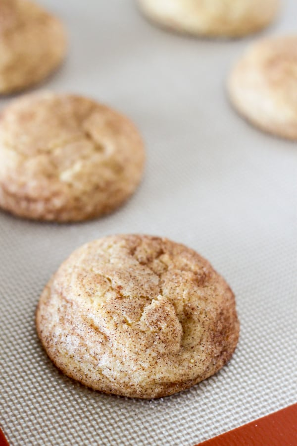 Pumpkin Snickerdoodle Cookies-9