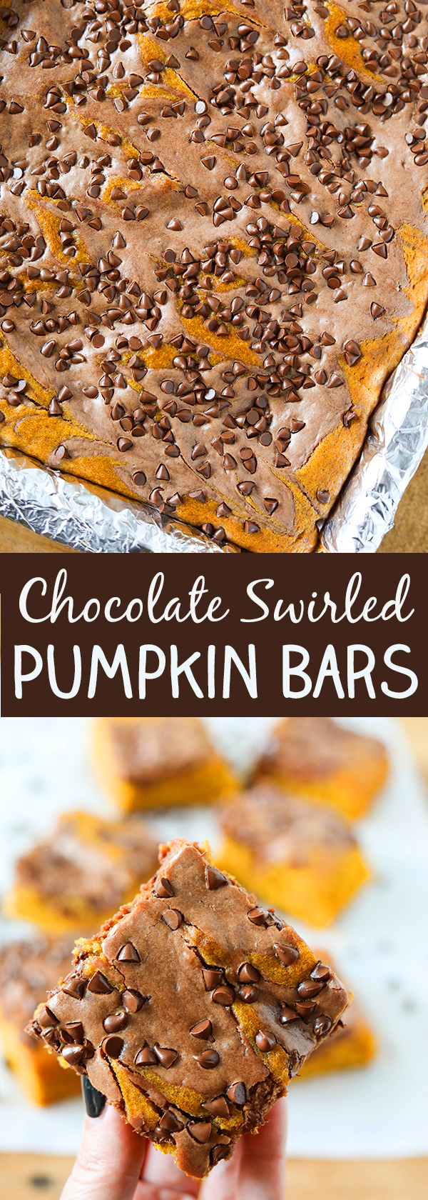 Pumpkin Bars with Chocolate Swirl and Chocolate Chips - these are so delicious!