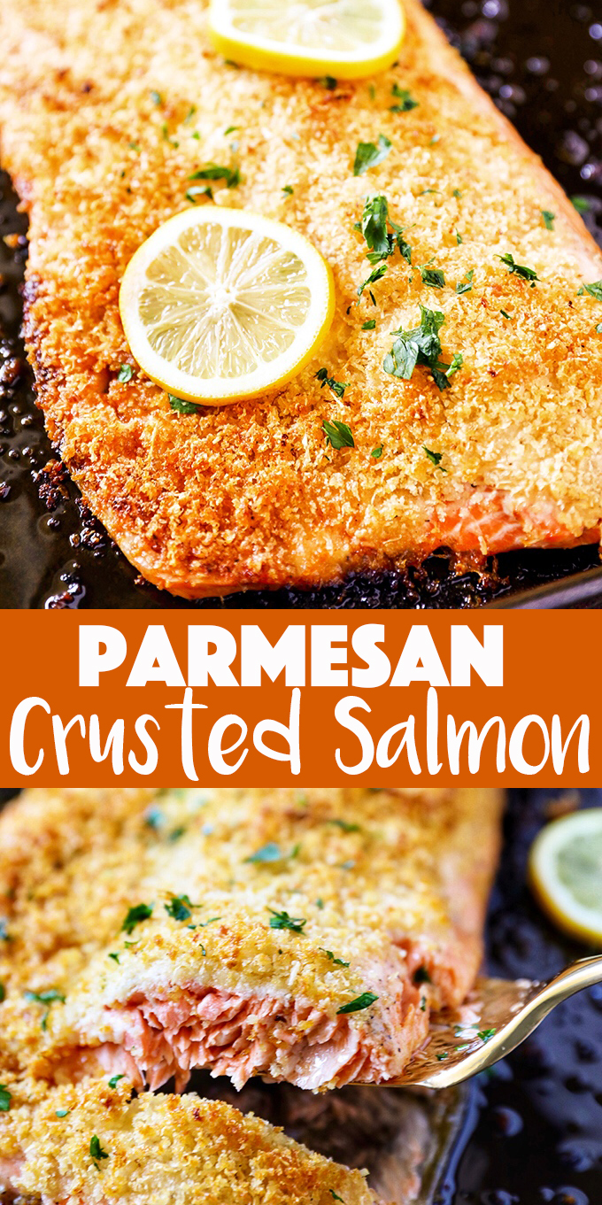 Parmesan Crusted Salmon Fillet Recipe
