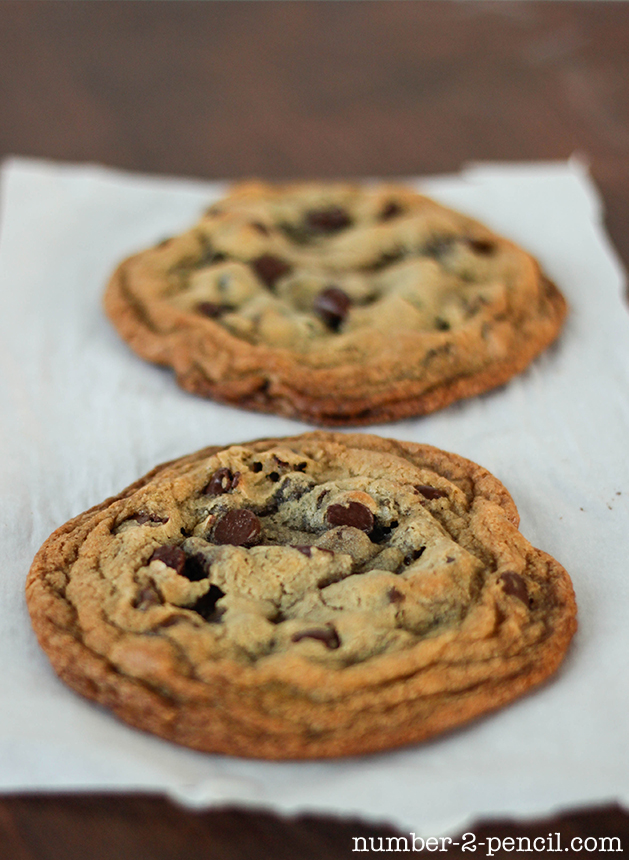 Perfect Single Serving Size Chocolate Chip Cookies