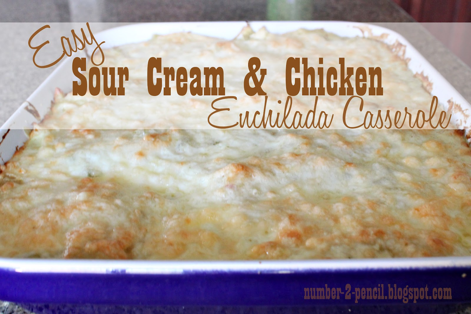 recipe: chicken enchiladas with cream of chicken soup and enchilada sauce [17]